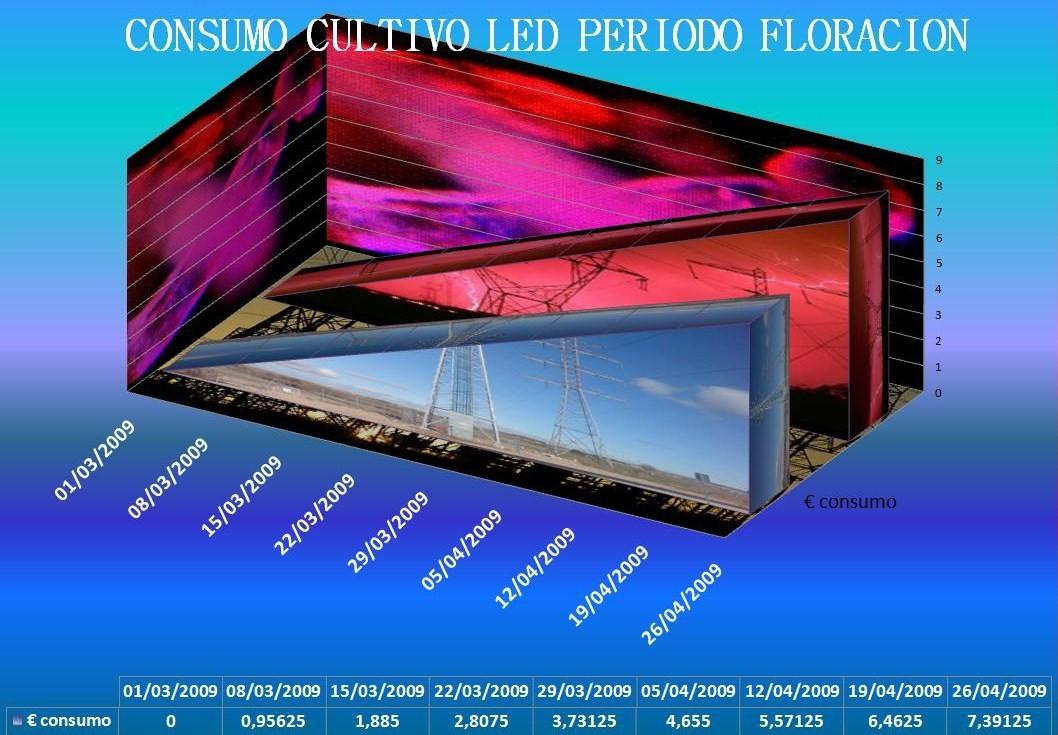 consumo-flora-13